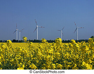 Regenerative energy - Wind energy and rape, regenerative...