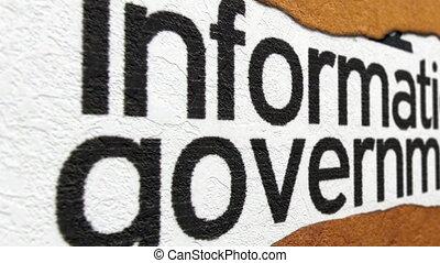 regering, informatie, tekst, op, gescheurd document