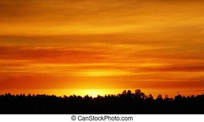 reggel, napkelte, át, a, elhomályosul