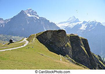região, suíça, jungfrau
