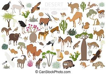 región, ecosistema, shrubland, mundo, desierto, diseño, ...