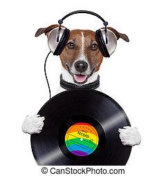 registro, auricular, música, perro, vinilo