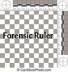 regla, forense, csi