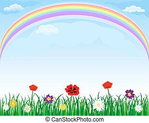 regnbåge, över, äng, med, gräs, och, blomningen