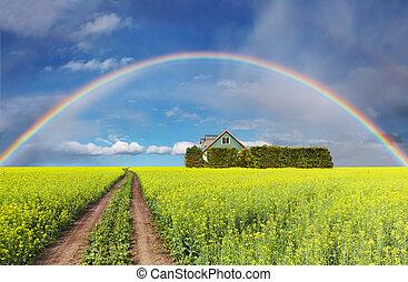 regnbåge, över, fält