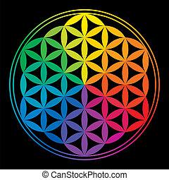 regnbåge, liv, blomma, färger