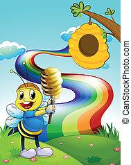 regnbue, hilltop, himmel, bi