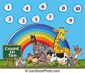 regnbue, ti, blå, farverig, himmel, æn, baggrund, antal