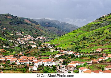 Regua landscape, Douro DOC