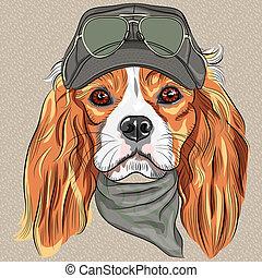 rei, raça, cute, charles, cão, spaniel, vetorial, hipster,...