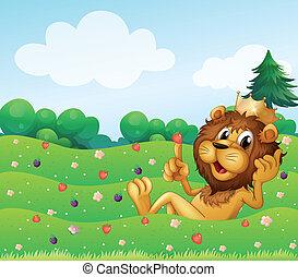 rei, topo, leão, colina