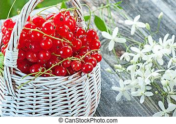 reif, weidenkorb, flowers., korinthe, hintergrund, klein, close-up., weißes, beeren, rotes