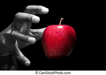 reiken, appel, hand, fruit, verboden, rood