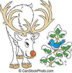 Reindeer and bird - White Reindeer talking with a Blue Bird