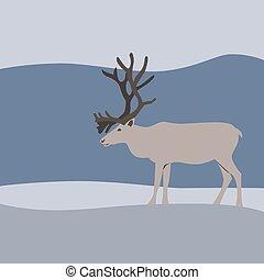 Reindeer in winter mountains