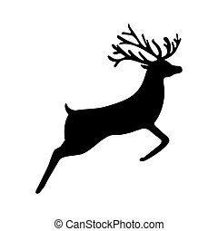 Reindeer isolated on white background, - Reindeer isolated ...