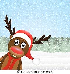 reindeer peeking side in the forest