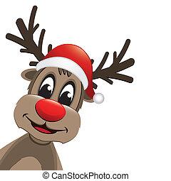 reindeer red nose and santa hat