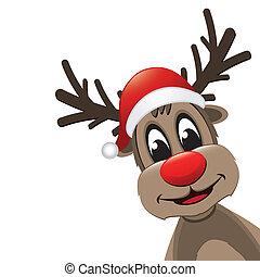 reindeer red nose with santa hat