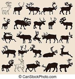 reindeer-set - 25 different reindeer