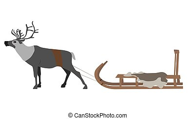 Reindeer team with reindeer. Isolate on white background. Vector image.