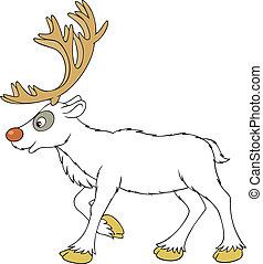 Reindeer - white reindeer with big antlers