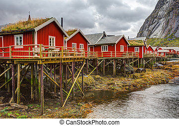 reine, pêchant village, à, lofoten, îles, norvège