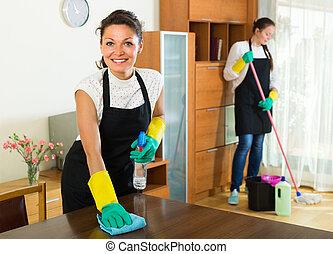 reinigingsmachines, poetsen, vrouwlijk, kamer