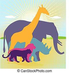 reino, animal, africano