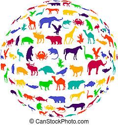 reino, popurrí, animal