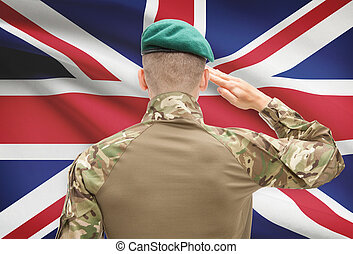 reino, unido, fuerzas, serie, nacional, -, bandera, Plano de...