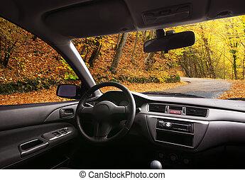 reise, in, auto.
