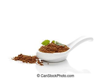 Reishi Medical mushroom powder