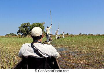 reiten, in, a, traditionelle , okavango dreieck, mokoro,...