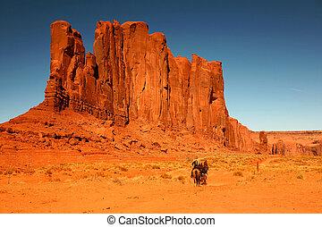 reiten, pferden, als, erholung, in, denkmal tal, arizona
