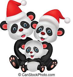 reizend, bär, karikatur, familie, panda