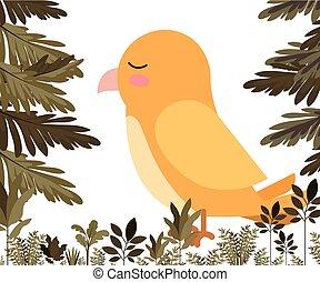 reizend, dschungel, vogel