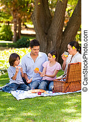 reizend, familie, picnicking, park