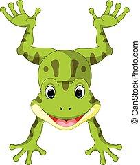 reizend, frosch, karikatur