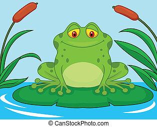 reizend, frosch, p, grün, lilie, karikatur