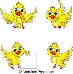 reizend, gelber vogel, sammlung, karikatur