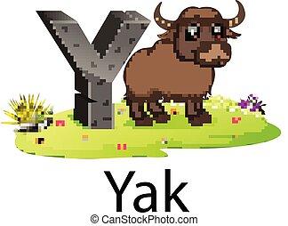 reizend, guten, tiere, alphabet, neben, uralt, yak, y, animation