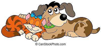 reizend, katz, und, hund