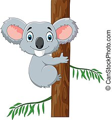 reizend, koala, akazie baum