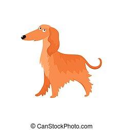 reizend, lang behaart, afghane, hund, zeichen, karikatur, vektor, abbildung