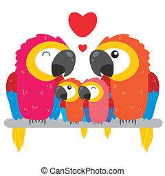 reizend, papagai, familie
