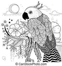 reizend, papagai