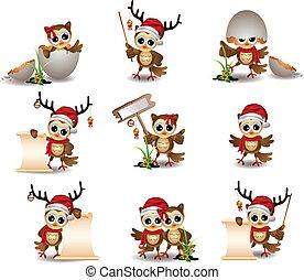 reizend, satz, eule, karikatur, weihnachten