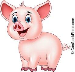 reizend, schwein, posierend, freigestellt