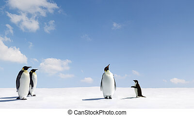 Rejection - Emperor Penguin rejects Adelie penguin